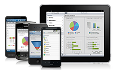 CRM 2011 on mobile devices